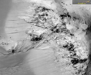 This image comes from observations of Horowitz crater by the HiRISE camera onboard NASA's Mars Reconnaissance Orbiter. The features that extend down the slope during warm seasons are called recurring slope lineae.