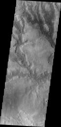 The channels in this image from NASA's 2001 Mars Odyssey spacecraft are draining a highstanding region north of Hellas Planum.