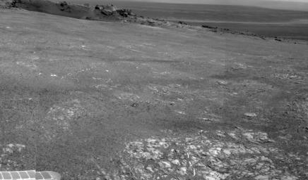 Bright veins cutting across outcrop in a section of Endeavour crater's rim called 'Botany Bay' are visible in the foreground and middle distance of this view from NASA's Mars Exploration Rover Opportunity on sol 2,681 (Aug. 9, 2011).