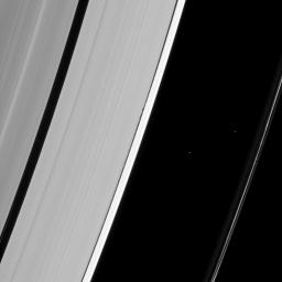 The tiny wavemaker moon Daphnis is dwarfed by the very waves it creates on the edge of the Keeler gap as seen by NASA's Cassini spacecraft.