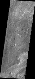 This image from NASA's 2001 Mars Odyssey spacecraft shows a small portion of Daedalia Planum, which is comprised of lava flows from Arsia Mons. Note the small channel in the image. This channel was likely created by lava rather than water flow.