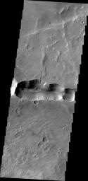 This image captured by NASA's 2001 Mars Odyssey spacecraft shows a scallop-edged depression, called Coprates Catena, parallels the main alignment of Vallis Marineris.