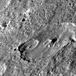 Complex Craters