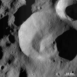This image from NASA's Dawn spacecraft is dominated by Caparronia impact crater, approximately 55 km in diameter with a mostly fresh, irregularly shaped rim. It also has a curved, linear mound running across most of its base.
