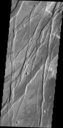 This image from NASA's Mars Odyssey spacecraft shows a portion of Tempe Fossae, a region of parallel to subparallel paired fractures called graben.
