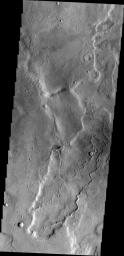 The unnamed channel in this image captured by NASA's 2001 Mars Odyssey spacecraft is located on the northeastern margin of Tempe Terra.