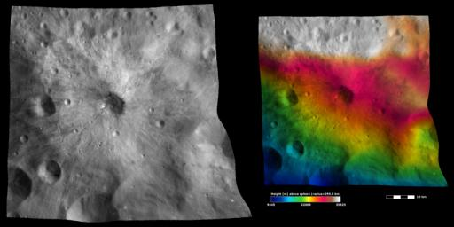 The left-hand image from NASA's Dawn spacecraft shows the apparent brightness of asteroid Vesta's surface. The right-hand image is based on this apparent brightness image, with a color-coded height representation of the topography overlain onto it.