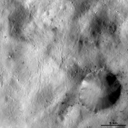 This image of asteroid Vesta from NASA's Dawn spacecraft shows a large crater with an irregularly shaped, reasonable sharp, fresh rim.