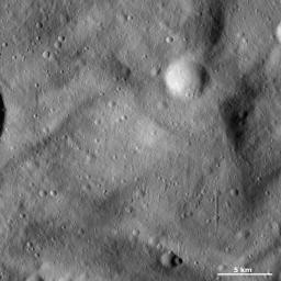 This image from NASA's Dawn spacecraft of asteroid Vesta shows the characteristic undulating surface of Vesta's southern hemisphere and many small craters, some of which make up secondary crater chains.