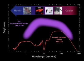 This plot illustrates the new population of 'hot DOGs,' or hot dust-obscured objects, found by WISE. The purple band represents the range of brightness observed for the extremely dusty objects.