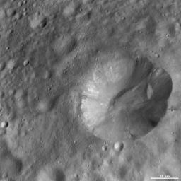 This image from NASA's Dawn spacecraft is located in Marcia quadrangle, just south of Vesta's equator. It has a scalloped shaped rim and the top part of the rim is more degraded than the rest.