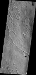 The channels in this image are located on the northwestern flank of Alba Mons. They are likely lava channels rather than water carved channels.