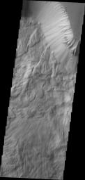 The massive, complex landslide deposits in this image from NASA's 2001 Mars Odyssey spacecraft are located on the northern slope of Ophir Chasma.