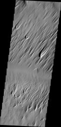 This image captured by NASA's 2001 Mars Odyssey spacecraft of Eumenides Dorsum shows erosion of the surface material by wind action.