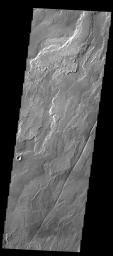 The lava flows in this image captured by NASA's 2001 Mars Odyssey spacecraft are part of Daedalia Planum, the immense plain of flows from Arsia Mons.