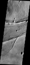 The linear and circular features in this image from NASA's Mars Odyssey spacecraft are all volcanic and are located at the base of the southern flank of Ascraeus Mons.