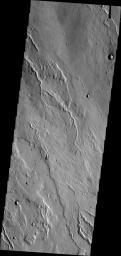 The channels in this image from NASA's Mars Odyssey spacecraft are located on the western flank of Alba Mons.