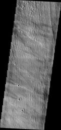 The parallel ridges in this image captured by NASA's Mars Odyssey spacecraft are part of Arsia Sulci - a region west of Arsia Mons. How these features were formed is unknown.