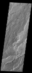 The lava flows in this image are part of Daedalia Planum as seen by NASA's 2001 Mars Odyssey spacecraft.