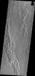 The channels in this image captured by NASA's 2001 Mars Odyssey spacecraft are part of Enipeus Vallis.