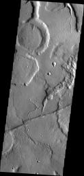 The channels in this image captured by NASA's 2001 Mars Odyssey spacecraft are draining the northeastern margin of Tempe Terra.