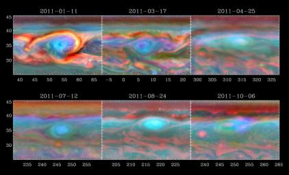 A vortex that was part of a giant storm on Saturn slowly dissipates over time in this set of false color images from NASA's Cassini spacecraft.
