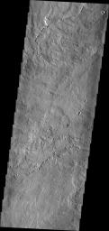 The lava flows in this image captured by NASA's 2001 Mars Odyssey spacecraft originated at Pavonis Mons.