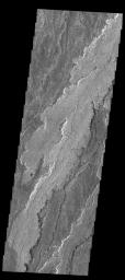 This image from NASA's 2001 Mars Odyssey spacecraft shows a small portion of the lava flows that make up Daedalia Planum.