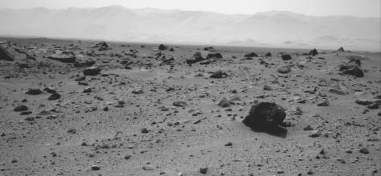 The prominent rock in this image from NASA's rover Curiosity, informally named 'East Bull Rock,' is about 20 inches (half a meter) high. The rock-studded local rise dominating the image is called 'Elsie Mountain'.
