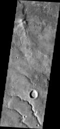 The channels in this image captured by NASA's 2001 Mars Odyssey spacecraft show draining from Coracis Fossae toward Bosporos Planum.
