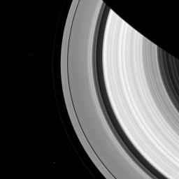Two pairs of moons make a rare joint appearance. The F ring's shepherd moons, Prometheus and Pandora, appear just inside and outside of the F ring (the thin faint ring furthest from Saturn) as seen by NASA's Cassini spacecraft.