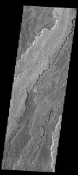 The extensive volcanic flows in this image captured by NASA's 2001 Mars Odyssey spacecraft are part of Daedalia Planum.