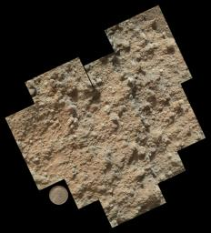 This mosaic of nine images taken at a location called 'Darwin,' inside Gale Crater, were taken by NASA's Mars rover Curiosity and shows detailed texture in a conglomerate rock bearing small pebbles and sand-size particles.