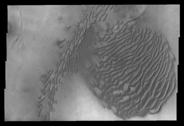 This image captured by NASA's 2001 Mars Odyssey spacecraft shows dunes on the floor of an unnamed crater in Terra Sirenum.