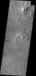 Significant wind erosion has sculpted these materials located south of Olympus Mons in this image taken by NASA's 2001 Mars Odyssey spacecraft.