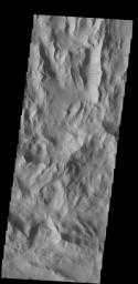 Dark slope streaks are common in Lycus Sulci, the complex ridged terrain surrounding the north and west side of Olympus Mons as seen in this image from NASA's 2001 Mars Odyssey spacecraft.