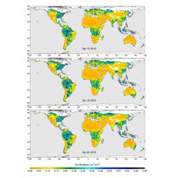 These maps of global soil moisture were created using data from the radiometer instrument on NASA's Soil Moisture Active Passive (SMAP) observatory. Evident are regions of increased soil moisture and flooding during April, 2015.