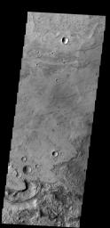This image from NASA's 2001 Mars Odyssey spacecraft shows a portion of the floor of Antoniadi Crater. The faint, dark marks may be dust devil tracks.