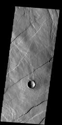 This image from NASA's 2001 Mars Odyssey spacecraft shows a portion of Alba Fossae, located on the northwestern margin of Alba Mons. Small channels are also visible.