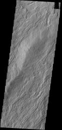 The narrow lava flows in this image from NASA's 2001 Mars Odyssey spacecraft are located on the northeastern flank of Olympus Mons.