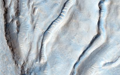 This image from NASA's Mars Reconnaissance Orbiter shows an unusual landform on the floor of Oxus Patera. Oxus Patera is an ancient, eroded depression in northern Arabia Terra.
