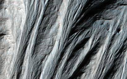 This image shows numerous dark shapes and bright spots on a sand dune in the Northern polar regions of Mars. This observation is from NASA's Mars Reconnaissance Orbiter.