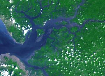 This image acquired by NASA's Terra spacecraft is of the Sierra Leone estuary, which became a focal point for trade and interaction between Africans and Europeans because of its exceptional harbor, starting in the mid-15th century.