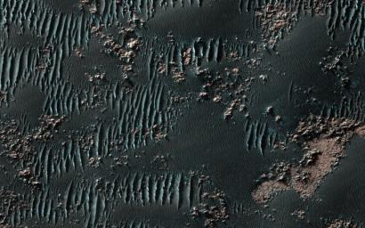 This observation from NASA's Mars Reconnaissance Orbiter shows sand dunes in late Northern spring on Mars, mixed with rock outcrops on the floor of a large crater.