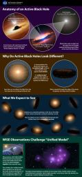 This infographic explains a popular theory of active supermassive black holes, referred to as the unified model -- and how new data from NASA's WISE, is at conflict with the model.