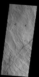 The multiple channels seen in this image captured by NASA's 2001 Mars Odyssey spacecraft dissect the northwestern margin of Alba Mons. The channels are called Rubicon Valles.