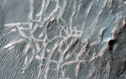 This image from NASA's Mars Reconnaissance Orbiter captures light-toned ridges found in a large fracture located east of Holden Crater forming a curious box-like pattern.