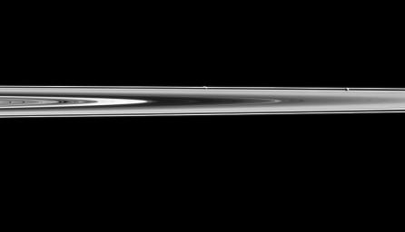 Prometheus and Pandora are almost hidden in Saturn's rings in this image captured by NASA's Cassini spacecraft. Prometheus is the left most moon in the ring plane, roughly in the center of the image. Pandora is towards the right.