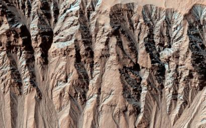 This image from NASA's Mars Reconnaissance Orbiter covers a location that has been imaged several times to look for changes in gullies.