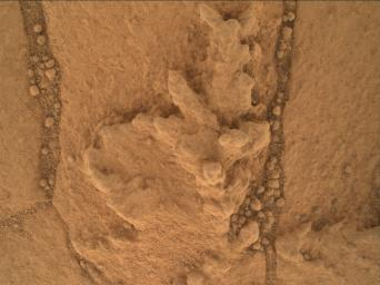 This image from the Mars Hand Lens Imager (MAHLI) camera on NASA's Curiosity Mars rover shows an example of a type of geometrically distinctive feature that researchers are using Curiosity to examine at a mudstone outcrop at the base of Mount Sharp.